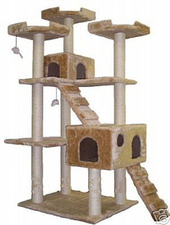 Cat Scratching Towers Toys and Bedding That Makes a Happy Feline