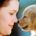 How to Know Your Dog Better and Care for Them Best?