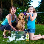 Why It Is Important To Buy Conditioners And Moisturizers Enabled Dog Shampoo?