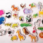 Fun Magnets For Kids: Things You Should Know About
