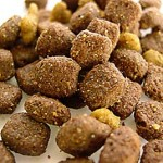 Homemade Dog Kibble: Now a Healthy Option